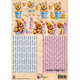 3D Step sheets baby bear , Fema Design A4 / 1 SH