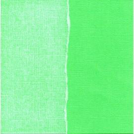 Cardstock Core'dinations - Arugula, 30 x 30 cm
