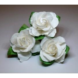 Tea Rose Large White - 3 pcs.
